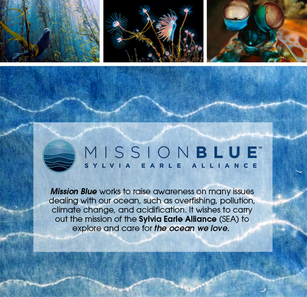 blog_mission_blue_3