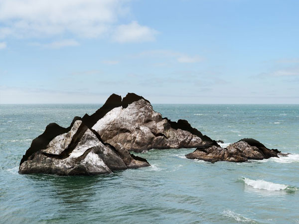 blog_resize_Plageman-Seal-Rocks