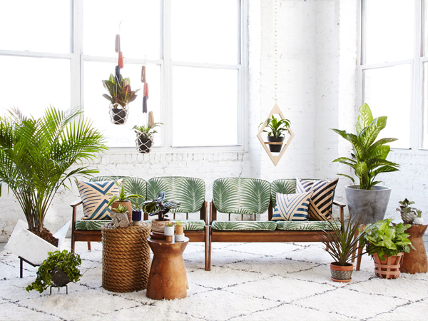 blog_resize_lonny_planter_roundup